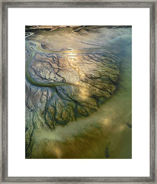 The Earth Veins Framed Print