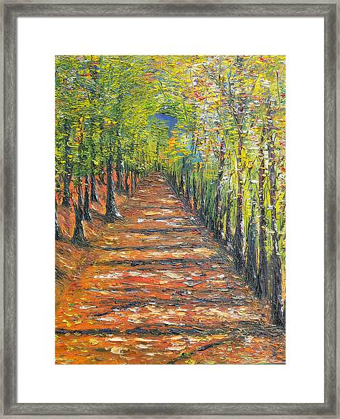 The Endless Road     Sold Framed Print