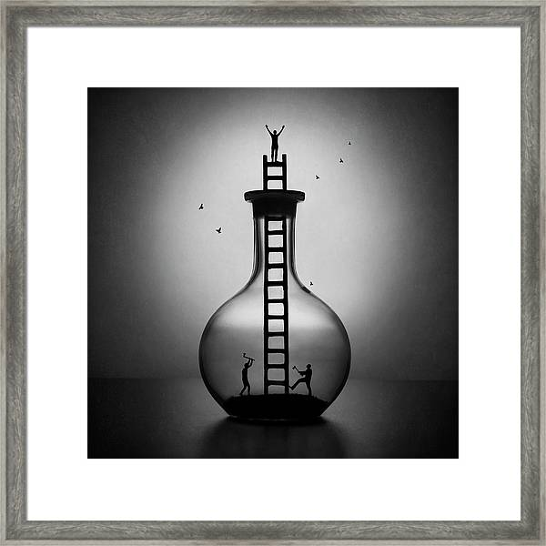The Envy Framed Print