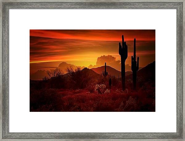 The Essence Of The Southwest Framed Print