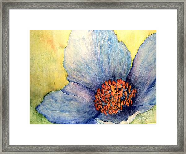 The Eye Popper Framed Print