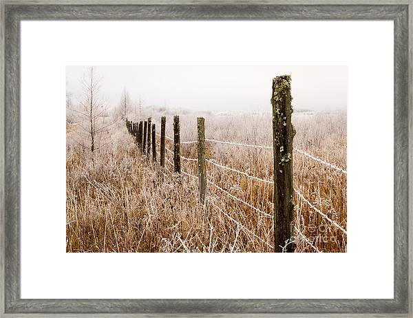 The Fence Still Stands Framed Print