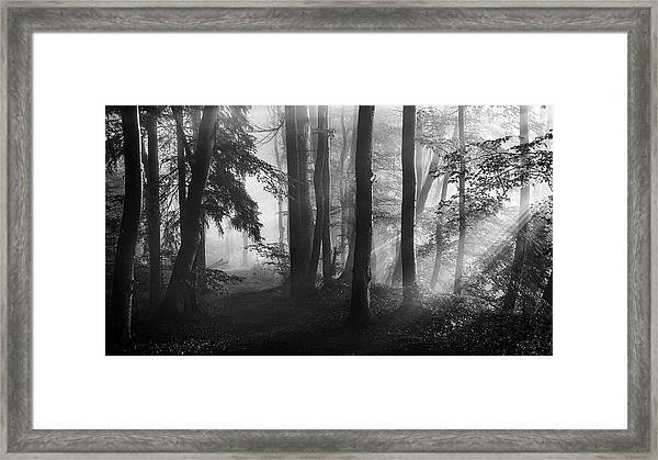 The First Light... Framed Print