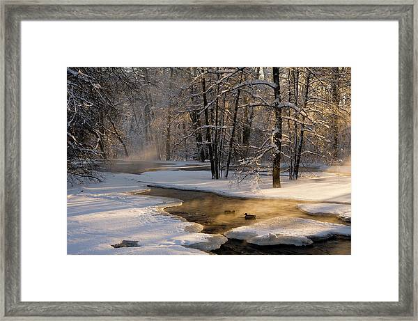 The First Light Framed Print by Robin Eriksson