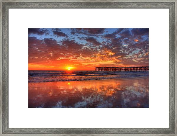 The Flame Of Pacific Beach Framed Print