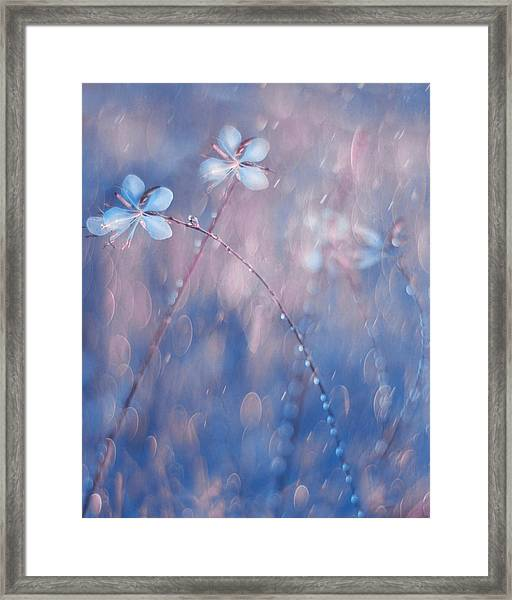 The Flower Duet Framed Print