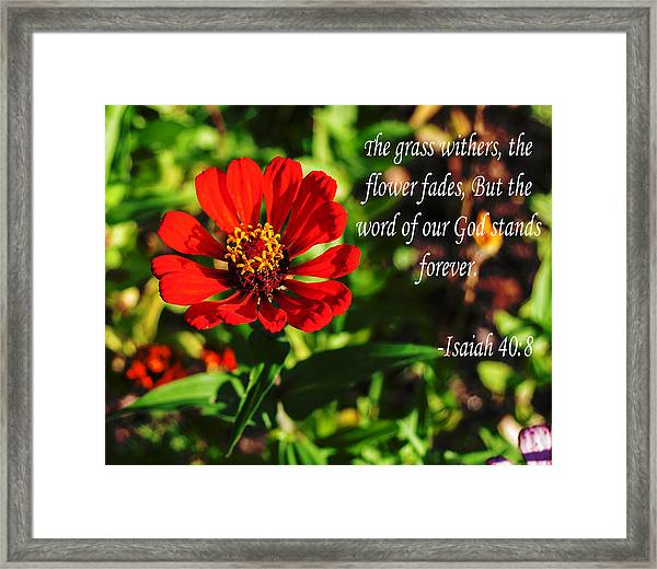 The Flower Fades Framed Print