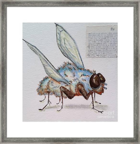 The Fly Framed Print