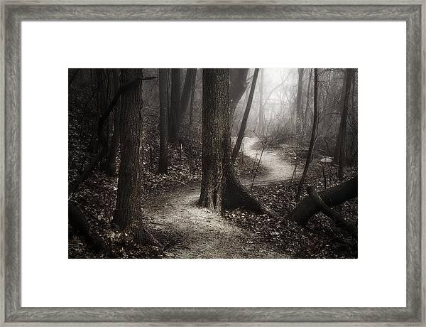 The Foggy Path Framed Print