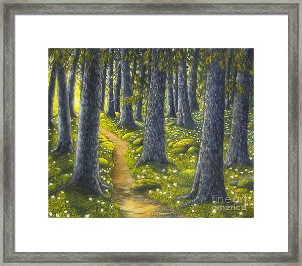 The Forest Path Framed Print