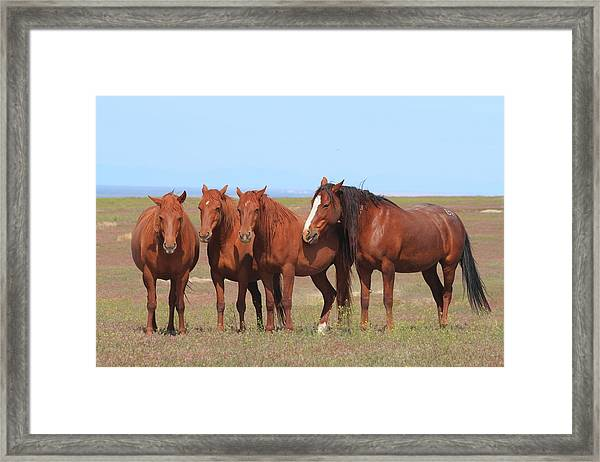 The Girls Club Framed Print by Gene Praag