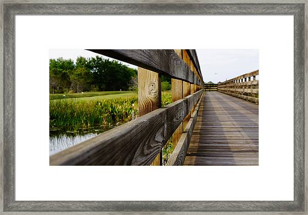 The Glades Framed Print by Kirk  Montgomery