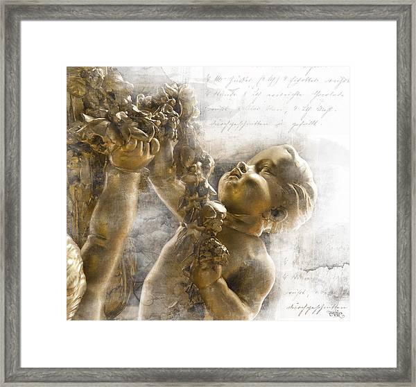 The Glory Of France Framed Print