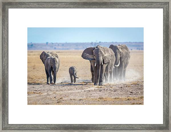 The Gods Of Yesteryear. Framed Print by Jeffrey C. Sink