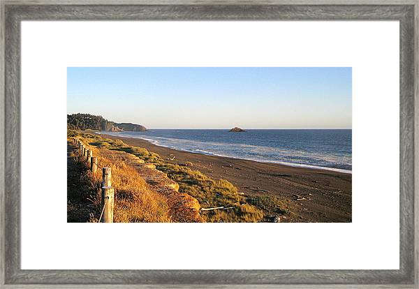 The Golden Coast Framed Print