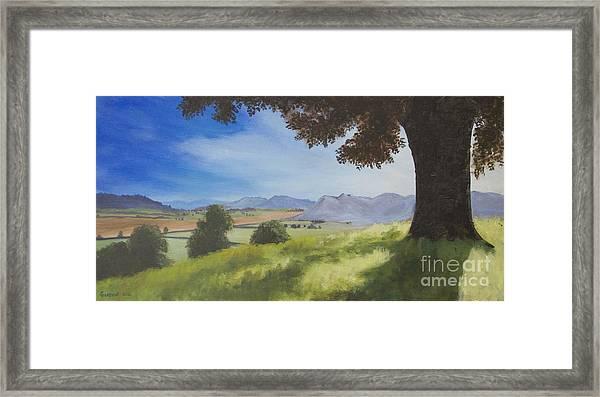 The Good Morning Tree Framed Print