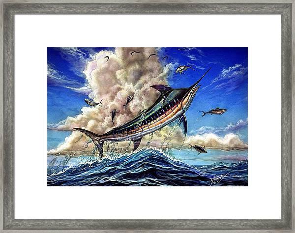 The Grand Challenge  Marlin Framed Print