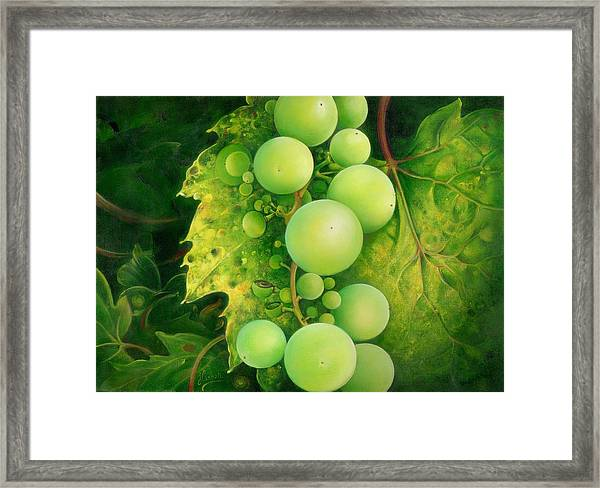 The Grapes Framed Print