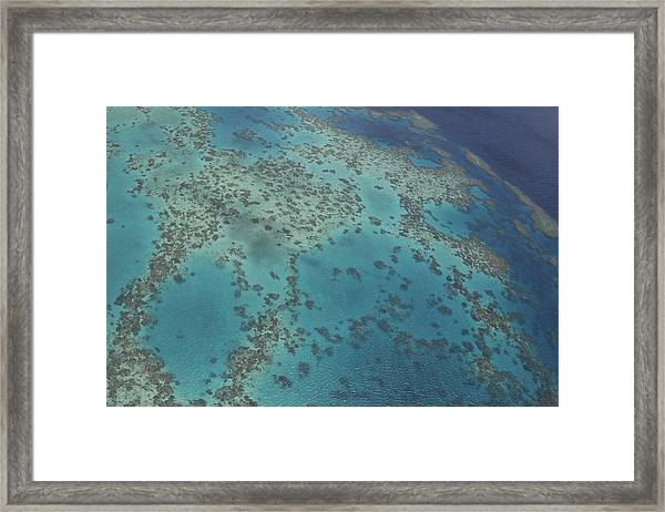 The Great Barrier Reef  Framed Print by Debbie Cundy