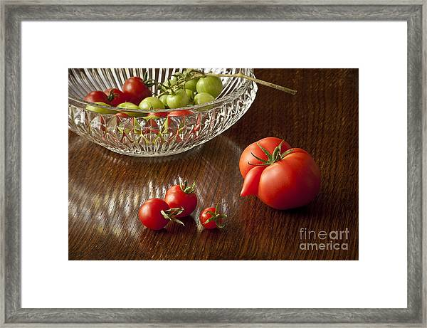 The Great Escape Framed Print by Donald Davis