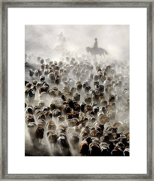 The Great Migration Of China Framed Print