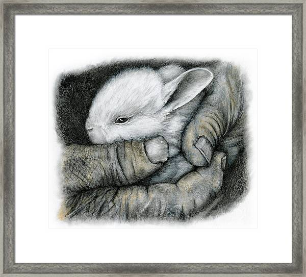The Guardian Framed Print
