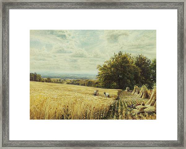 The Harvesters Framed Print