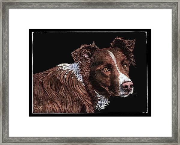 The Herder Framed Print