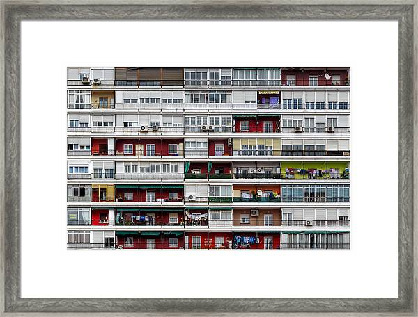 The Hive Framed Print by Alfonso Novillo