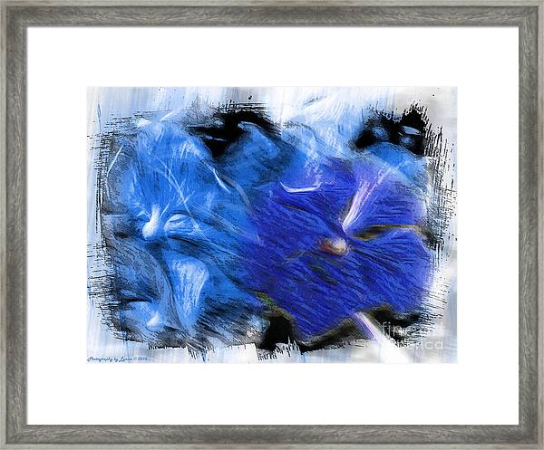 The Images Within Framed Print