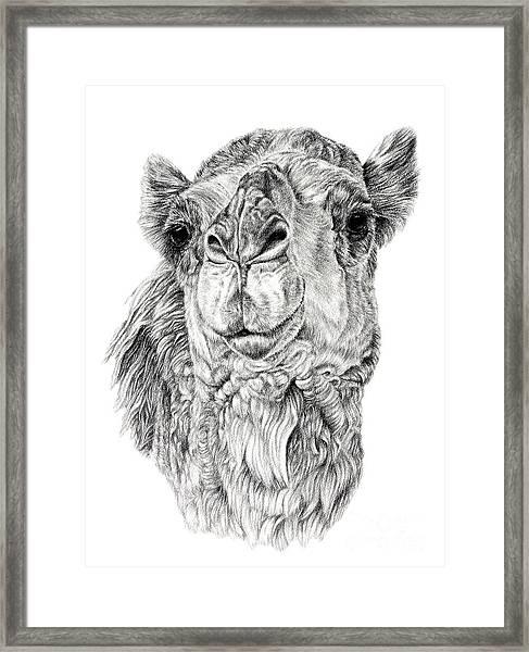 The Leader Framed Print