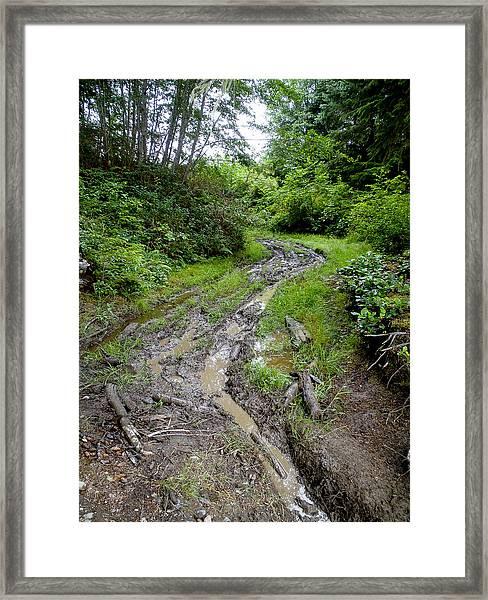 The Ledge Point Trail Framed Print