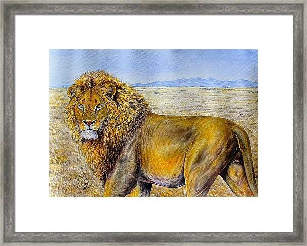 The Lion Rules Framed Print