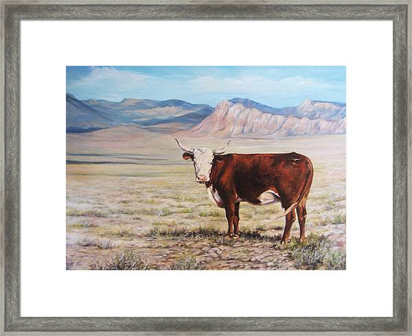 The Lone Range Framed Print