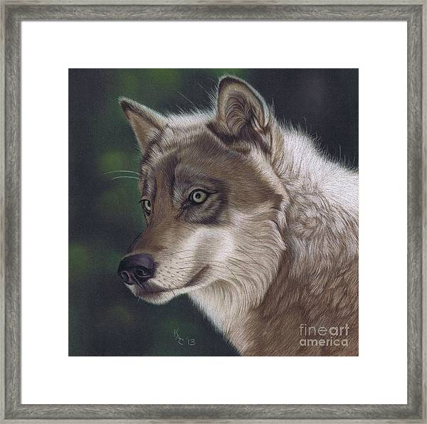 The Look Out Framed Print