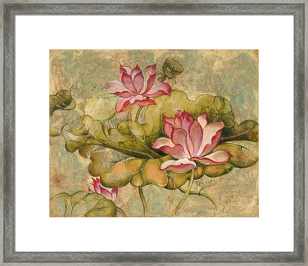 The Lotus Family Framed Print