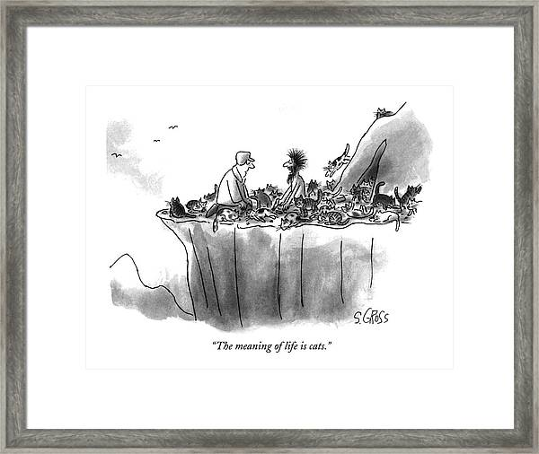 The Meaning Of Life Is Cats Framed Print