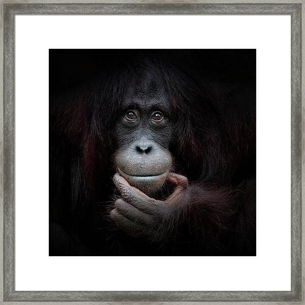 The Mirror Image Framed Print