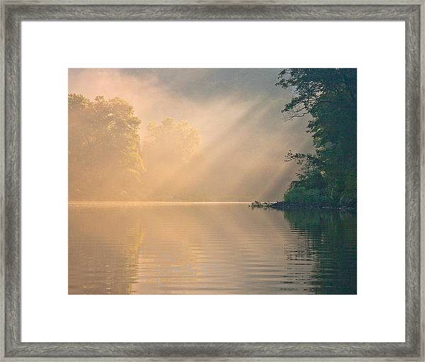 The Morning After Framed Print
