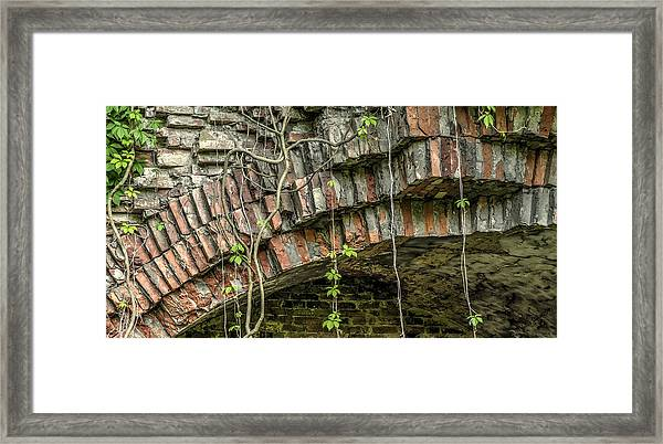 The Nature Of Time Equals Time For The Nature Framed Print