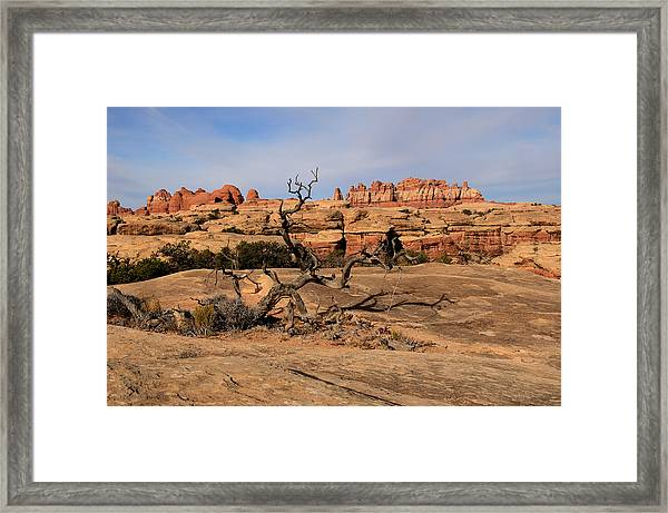 The Needles At Canyonlands National Park Framed Print