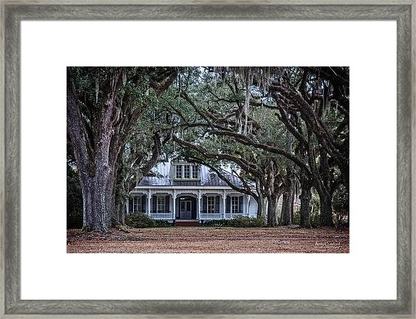 The Oaks Plantation Framed Print