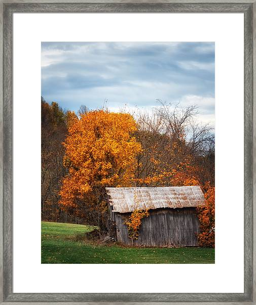The Old Shed In Fall Framed Print