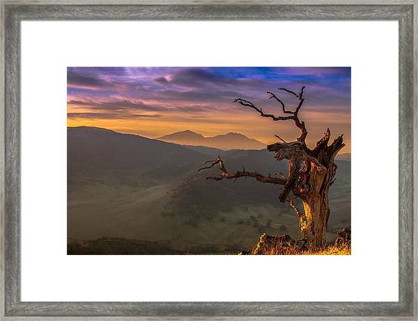 The Old Tree And Diablo Framed Print