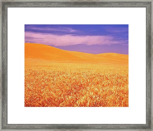 The Palouse Steptoe Butte Framed Print