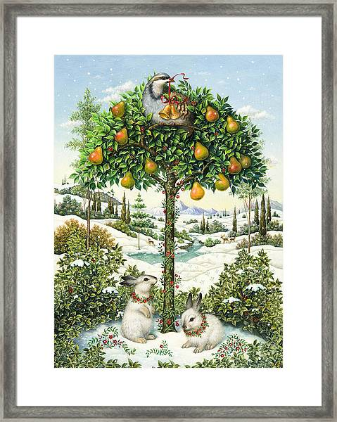 The Partridge In A Pear Tree Framed Print