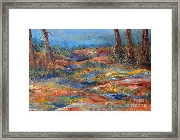 The Path 1 Framed Print