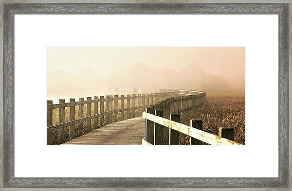 The Path Gets Brighter. Framed Print