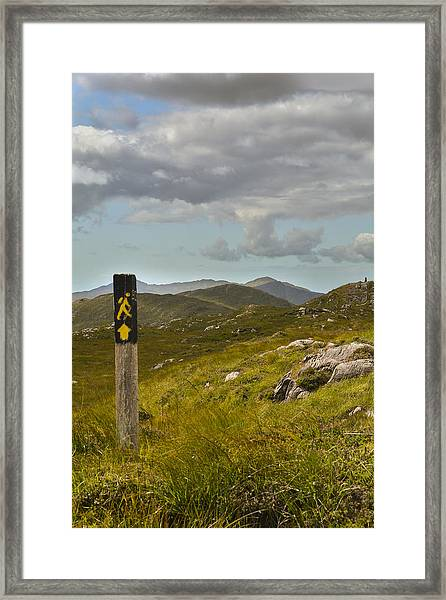 The Path To The Hills Framed Print