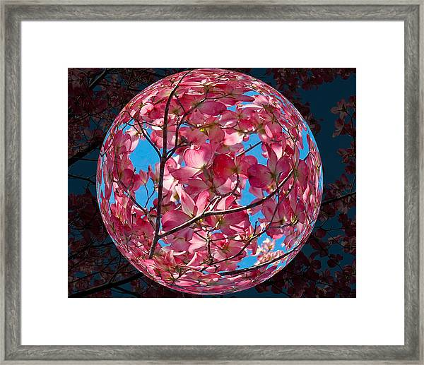 Framed Print featuring the photograph The Peach Tree Sphere by William Havle